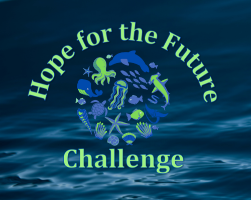Hope for the Future Challenge (1)