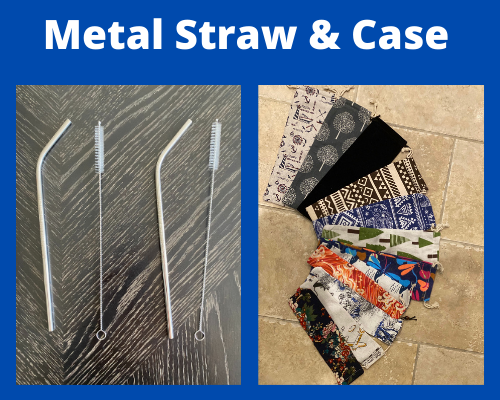 Metal Straw and Case